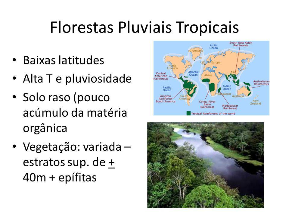 Florestas Pluviais Tropicais