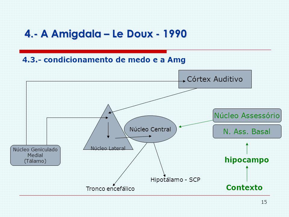 4.- A Amigdala – Le Doux - 1990 4.3.- condicionamento de medo e a Amg