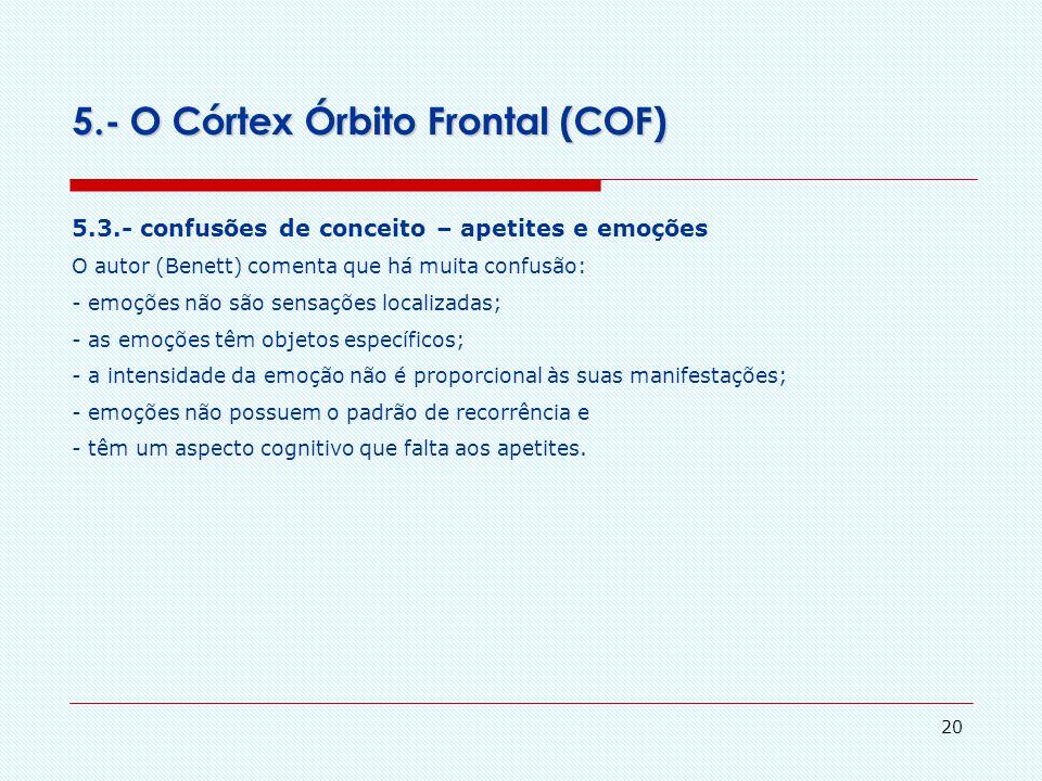 5.- O Córtex Órbito Frontal (COF)