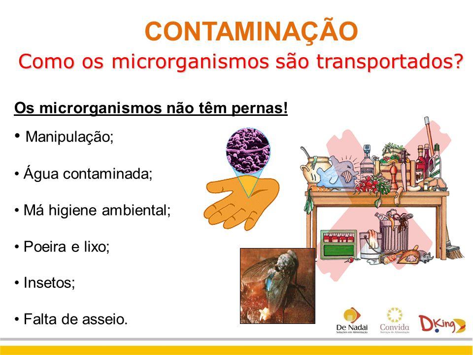 Como os microrganismos são transportados