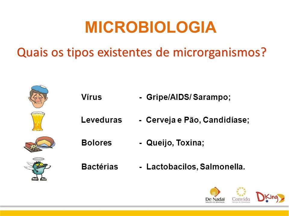 Quais os tipos existentes de microrganismos