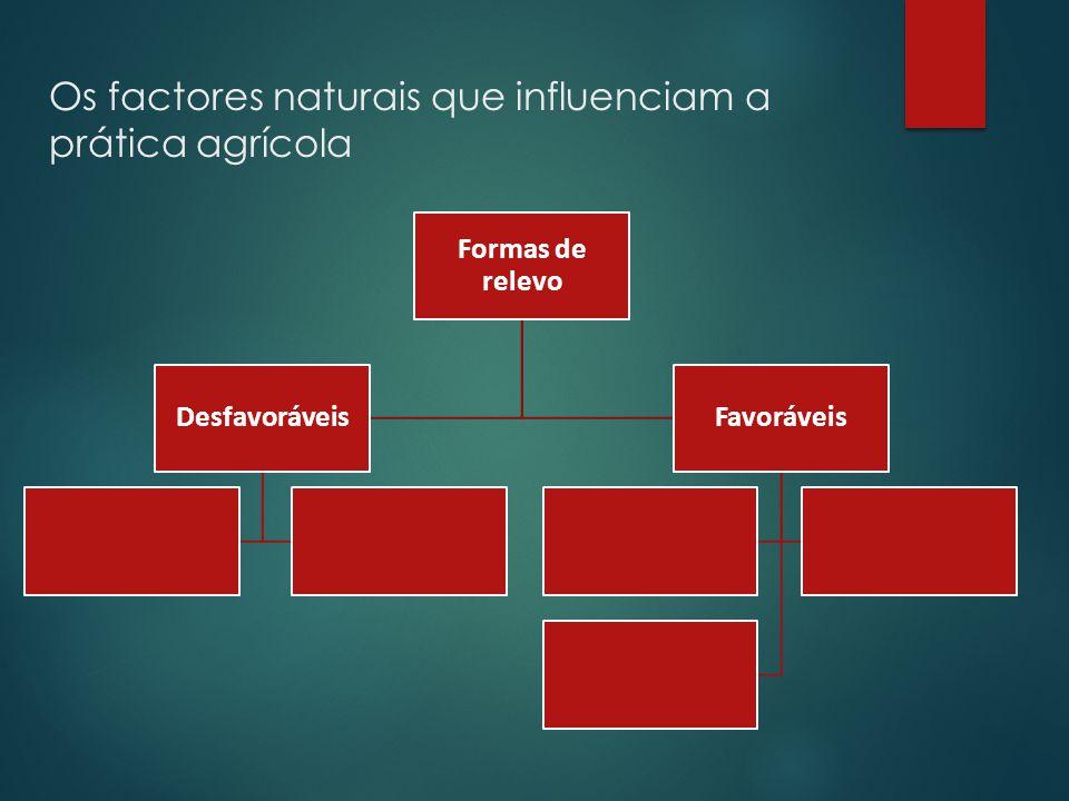 Os factores naturais que influenciam a prática agrícola