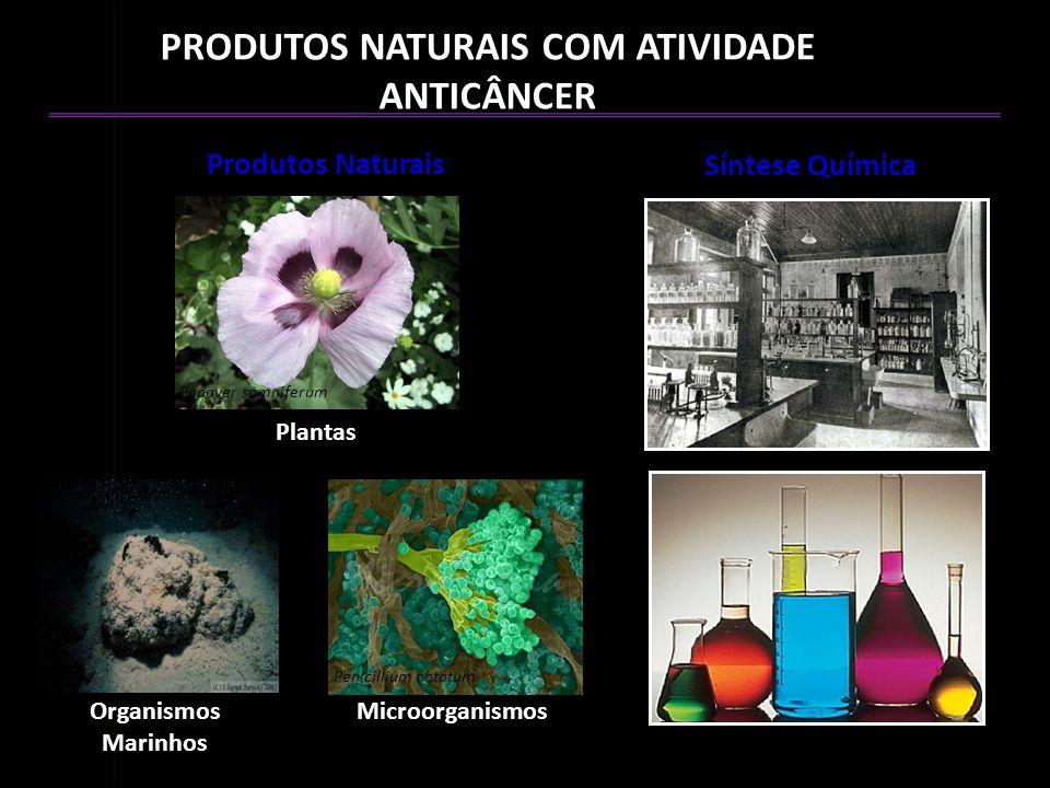 PRODUTOS NATURAIS COM ATIVIDADE ANTICÂNCER