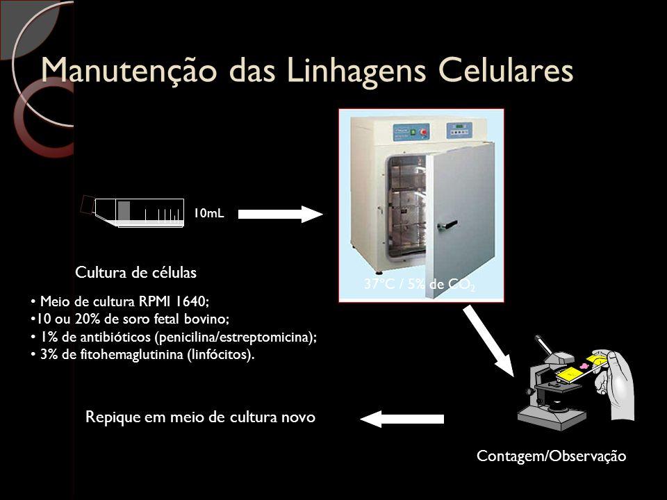 Manutenção das Linhagens Celulares