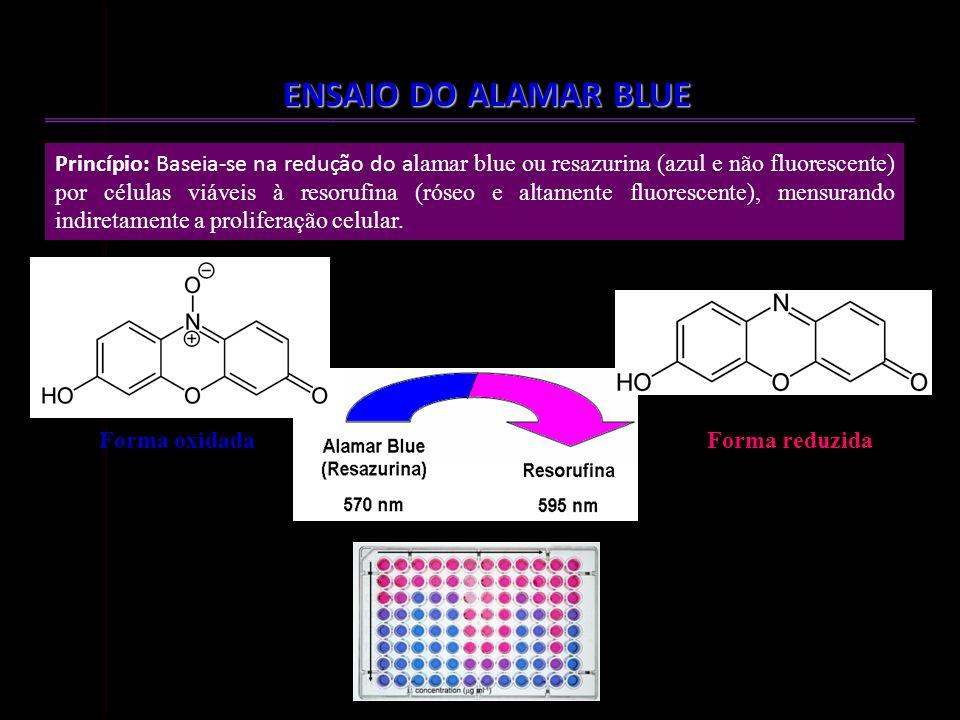TESTE DE CITOTOXICIDADE EM CMSP