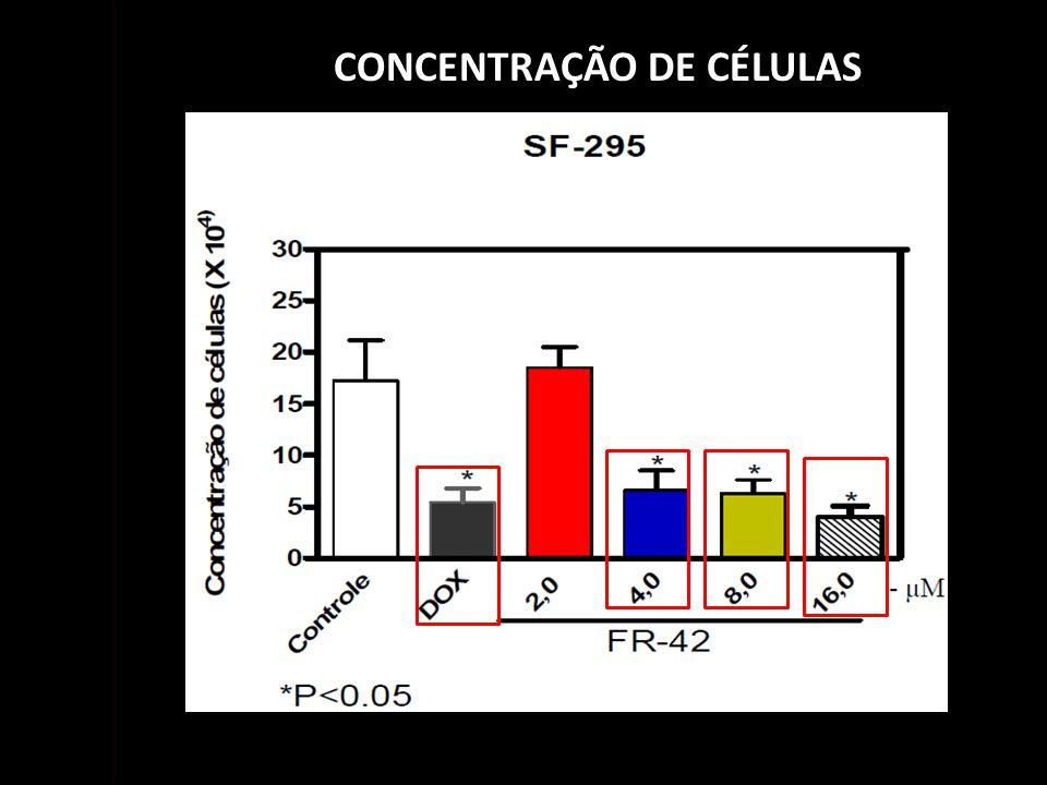 CONCENTRAÇÃO DE CÉLULAS