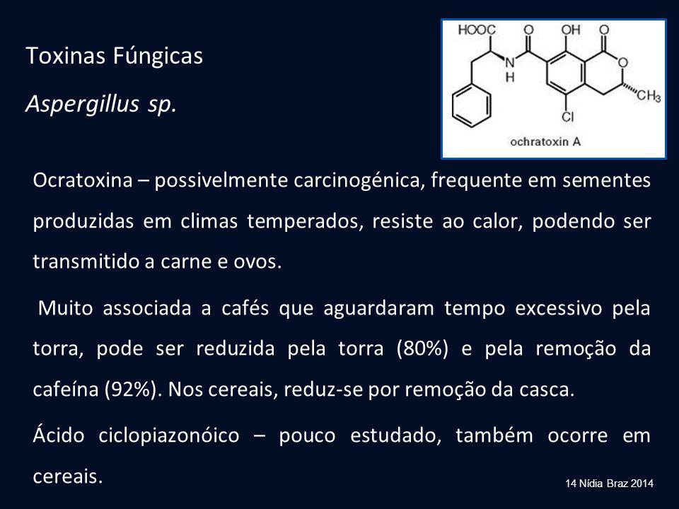 Toxinas Fúngicas Aspergillus sp.