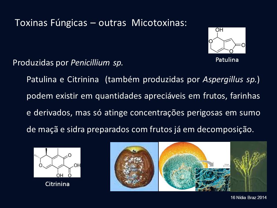Toxinas Fúngicas – outras Micotoxinas: