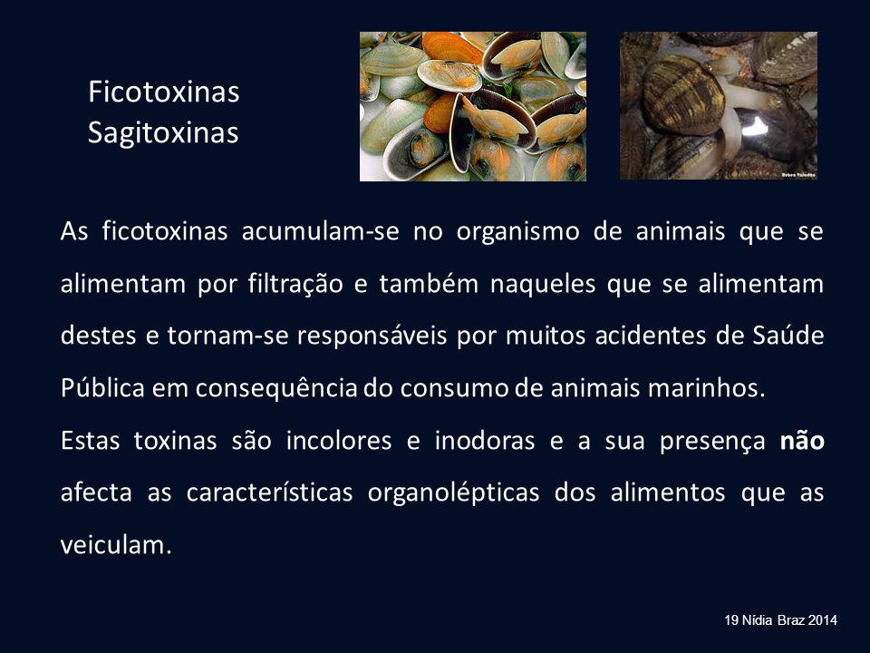 Ficotoxinas Sagitoxinas