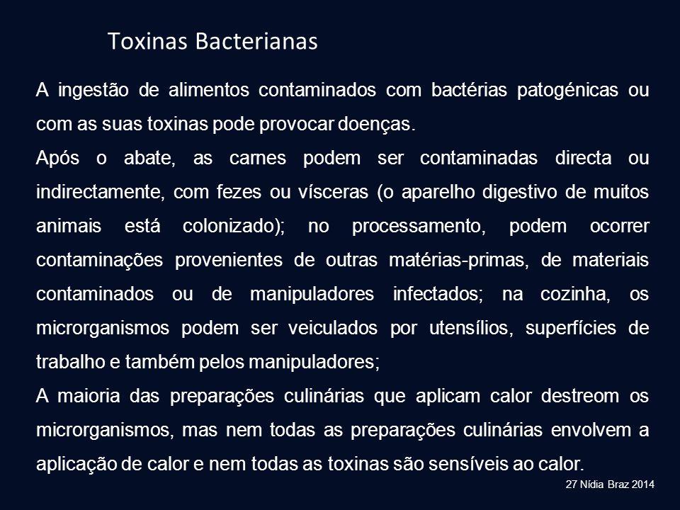 Toxinas Bacterianas A ingestão de alimentos contaminados com bactérias patogénicas ou com as suas toxinas pode provocar doenças.