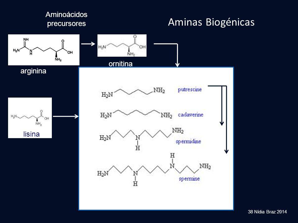 Aminoácidos precursores