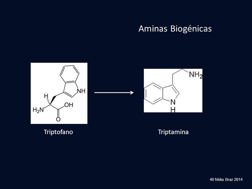 Aminas Biogénicas Triptofano Triptamina 40 Nídia Braz 2014