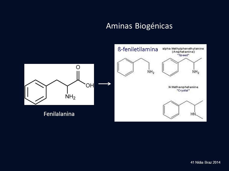 Aminas Biogénicas ß-feniletilamina Fenilalanina 41 Nídia Braz 2014