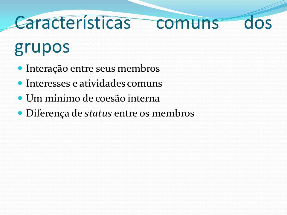 Características comuns dos grupos