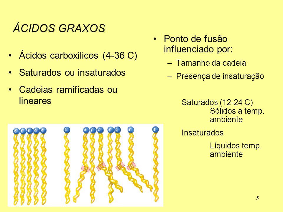 ÁCIDOS GRAXOS Ácidos carboxílicos (4-36 C)