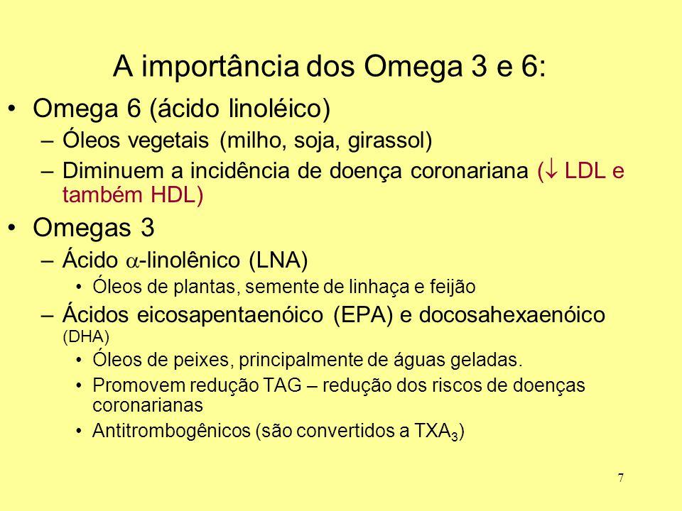 A importância dos Omega 3 e 6: