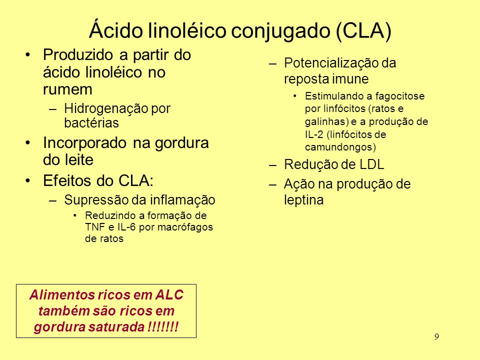 Ácido linoléico conjugado (CLA)