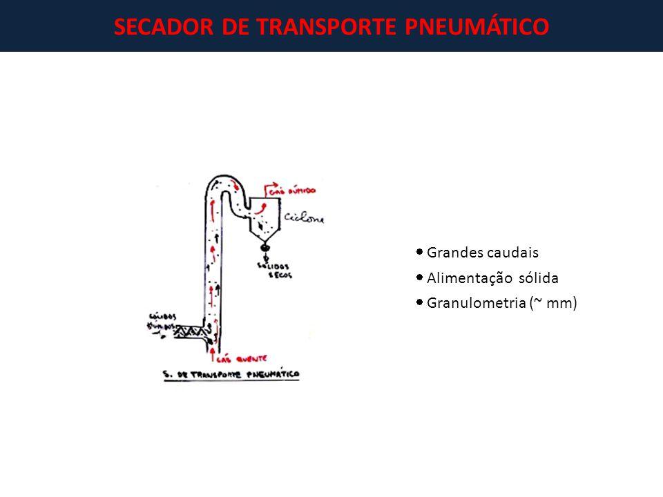 SECADOR DE TRANSPORTE PNEUMÁTICO