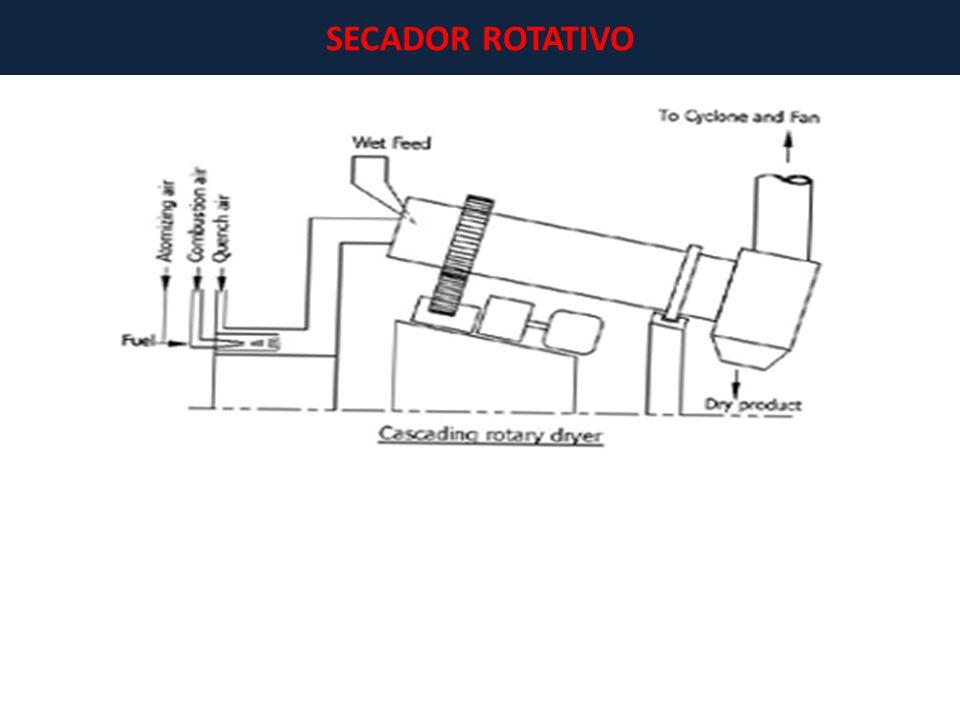 SECADOR ROTATIVO