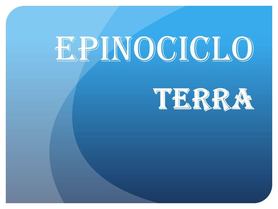 EPINOCICLO TERRA