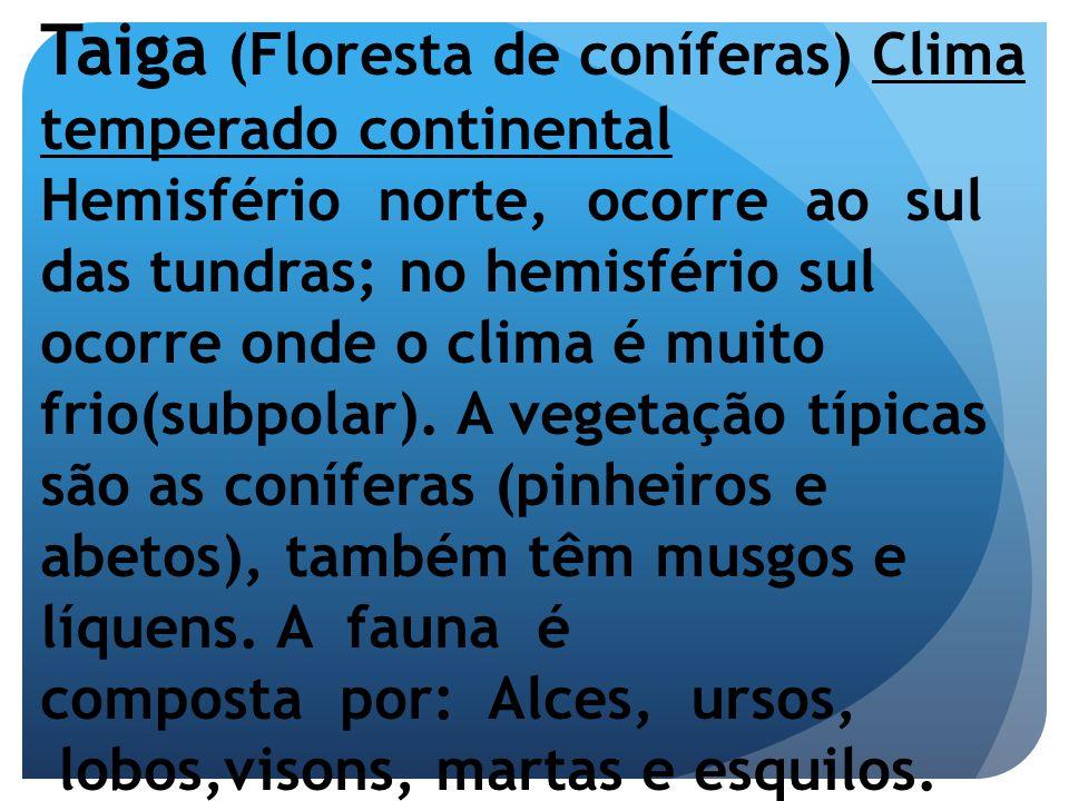 Taiga (Floresta de coníferas) Clima temperado continental