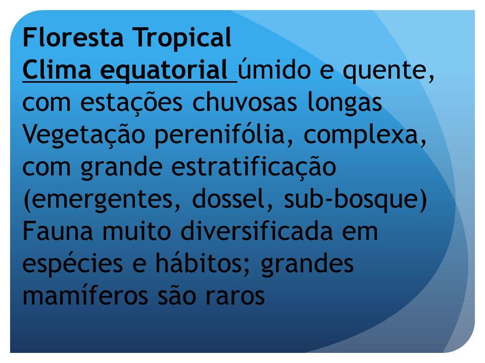Floresta Tropical Clima equatorial úmido e quente, com estações chuvosas longas.