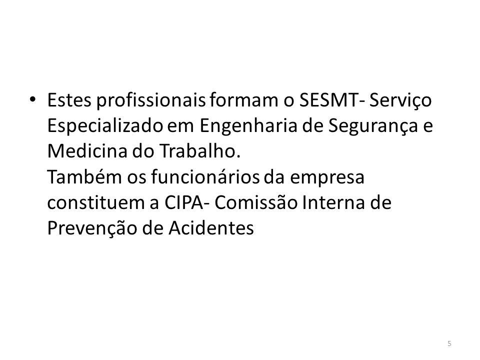 Estes profissionais formam o SESMT- Serviço Especializado em Engenharia de Segurança e Medicina do Trabalho.