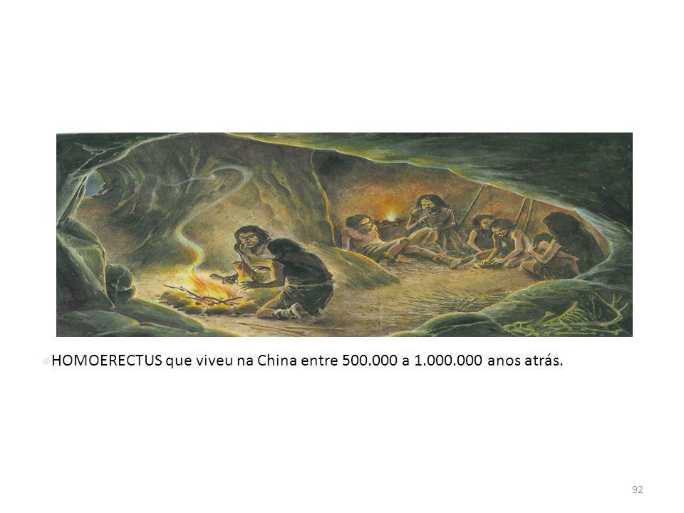 HOMOERECTUS que viveu na China entre 500.000 a 1.000.000 anos atrás.