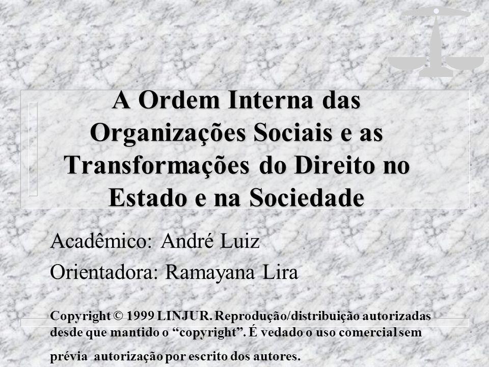 A Ordem Interna das Organizações Sociais e as Transformações do Direito no Estado e na Sociedade