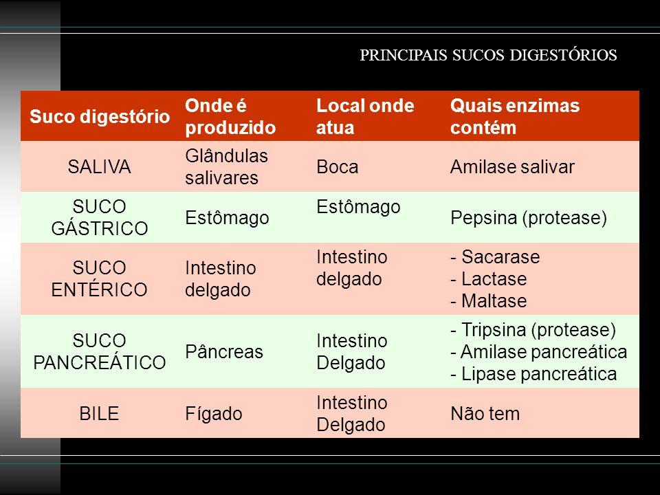 Suco digestório Onde é produzido Local onde atua Quais enzimas contém