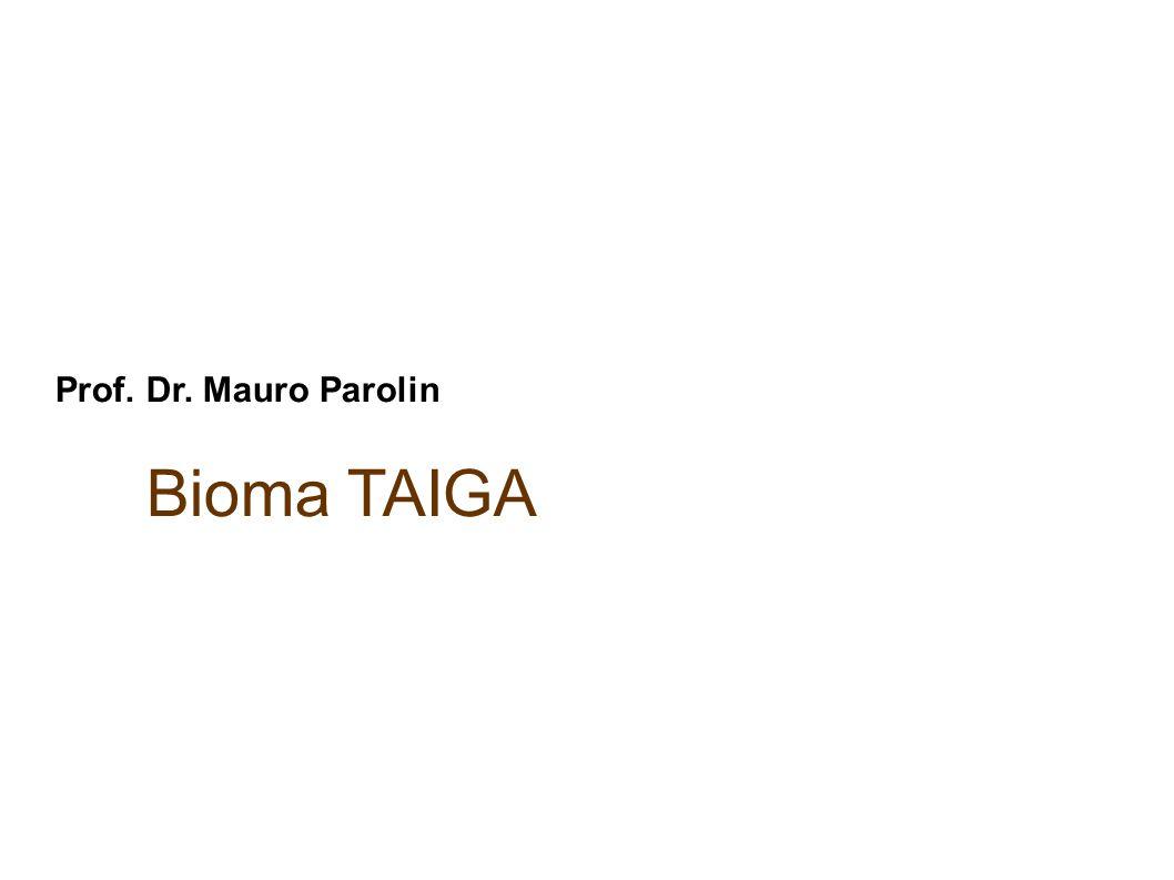 Prof. Dr. Mauro Parolin Bioma TAIGA