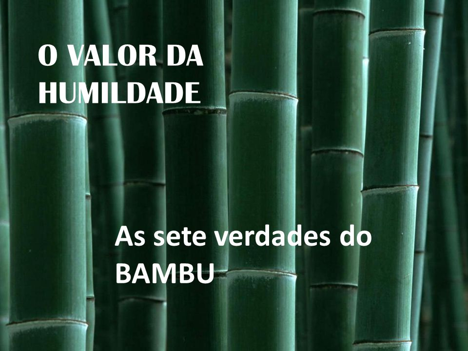 O VALOR DA HUMILDADE As sete verdades do BAMBU