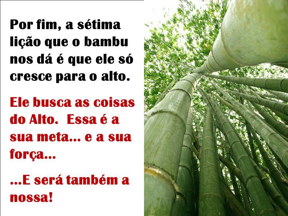 Por fim, a sétima lição que o bambu nos dá é que ele só cresce para o alto.