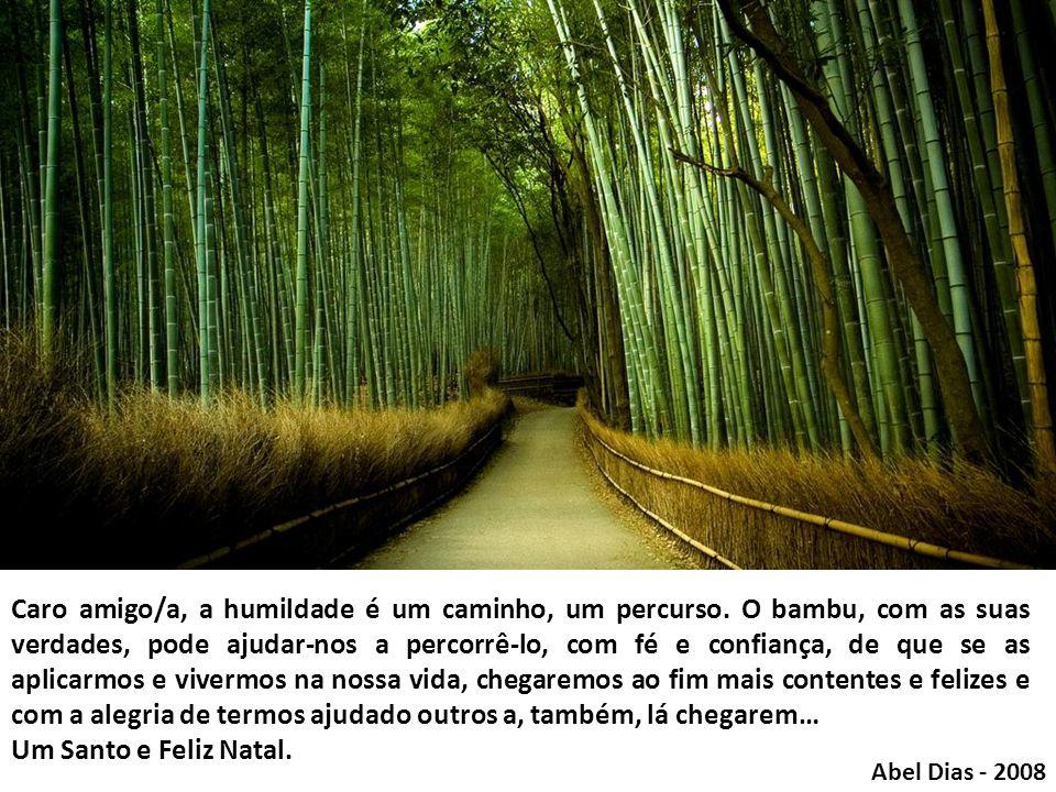 Caro amigo/a, a humildade é um caminho, um percurso