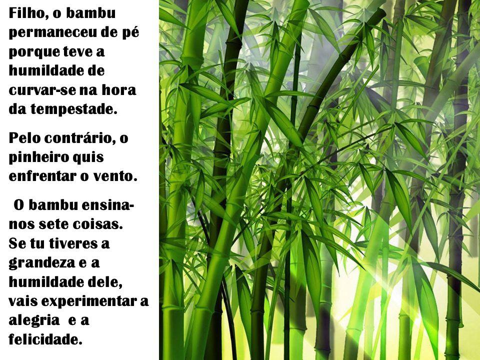 Filho, o bambu permaneceu de pé porque teve a humildade de curvar-se na hora da tempestade.