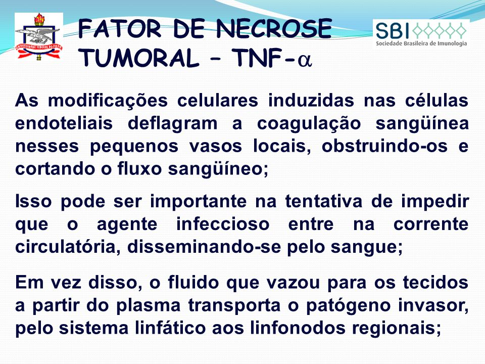 FATOR DE NECROSE TUMORAL – TNF-a
