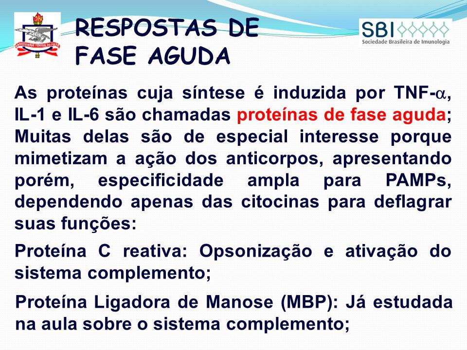 RESPOSTAS DE FASE AGUDA