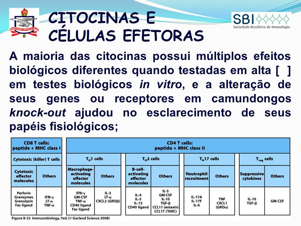 CITOCINAS E CÉLULAS EFETORAS