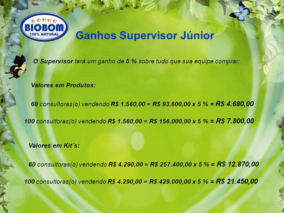 Ganhos Supervisor Júnior