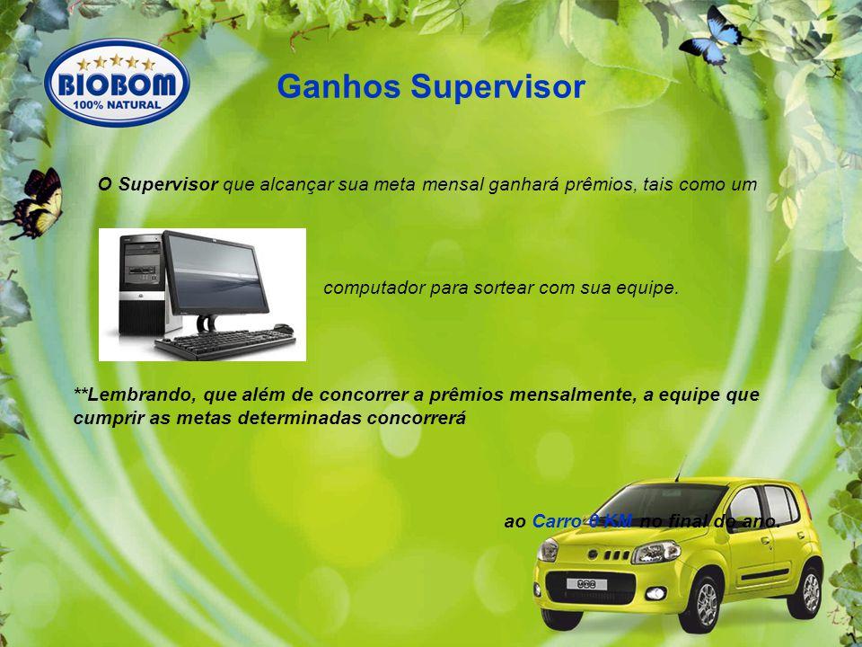 Ganhos Supervisor O Supervisor que alcançar sua meta mensal ganhará prêmios, tais como um. computador para sortear com sua equipe.