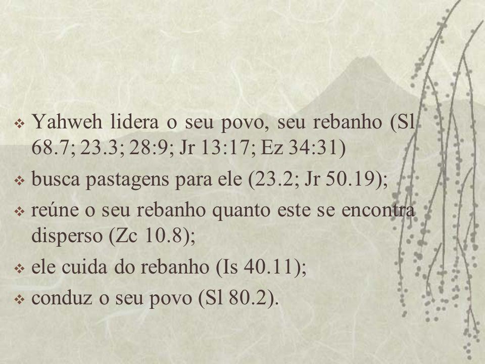 Yahweh lidera o seu povo, seu rebanho (Sl 68. 7; 23