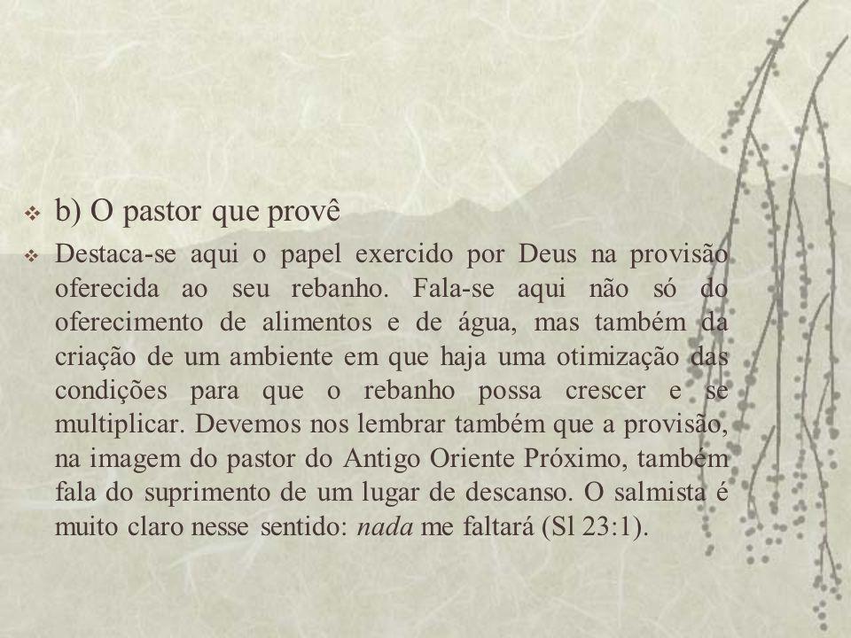 b) O pastor que provê