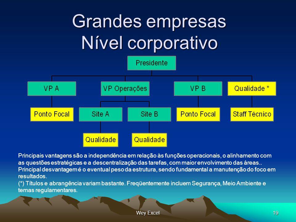 Grandes empresas Nível corporativo