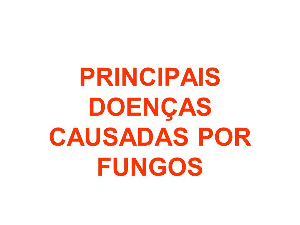 PRINCIPAIS DOENÇAS CAUSADAS POR FUNGOS