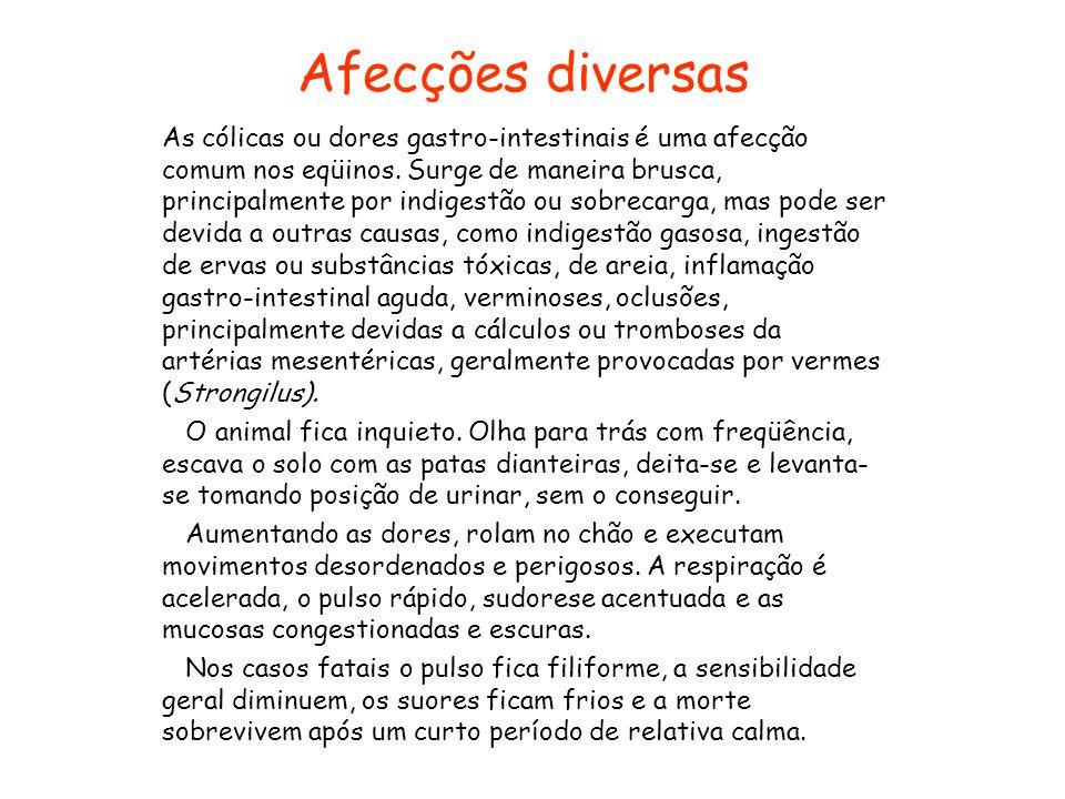 Afecções diversas