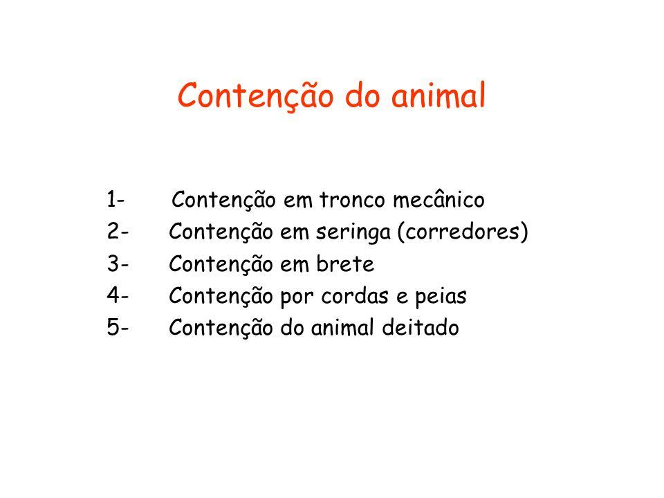 Contenção do animal 1- Contenção em tronco mecânico