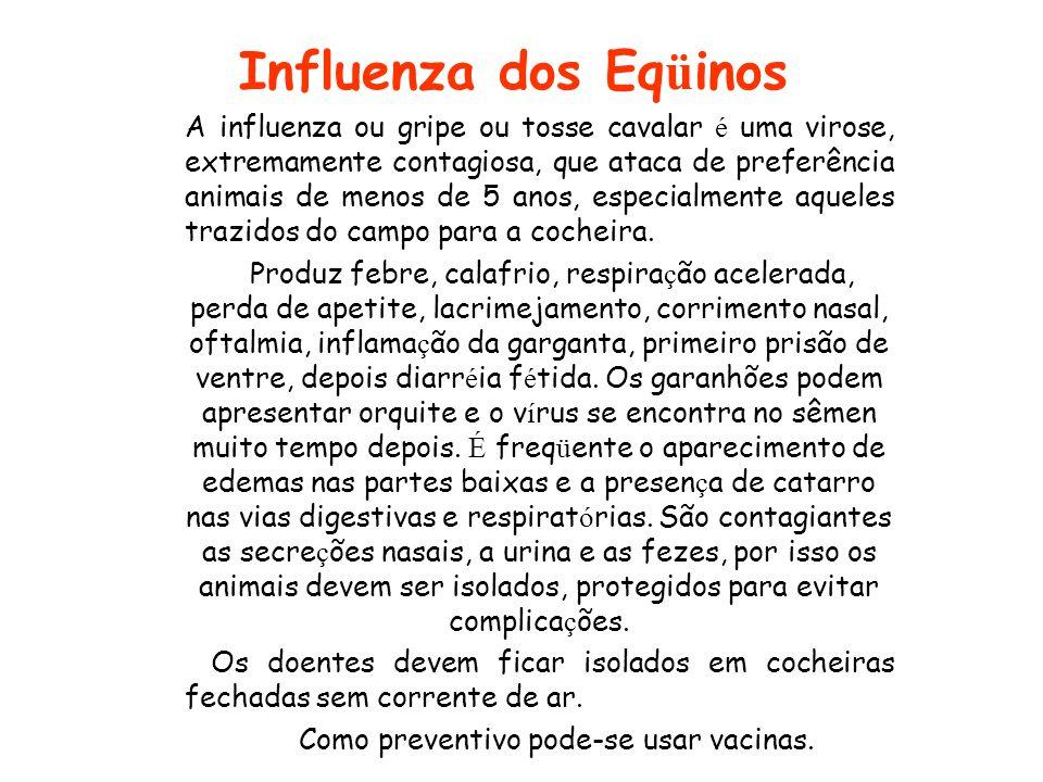 Como preventivo pode-se usar vacinas.