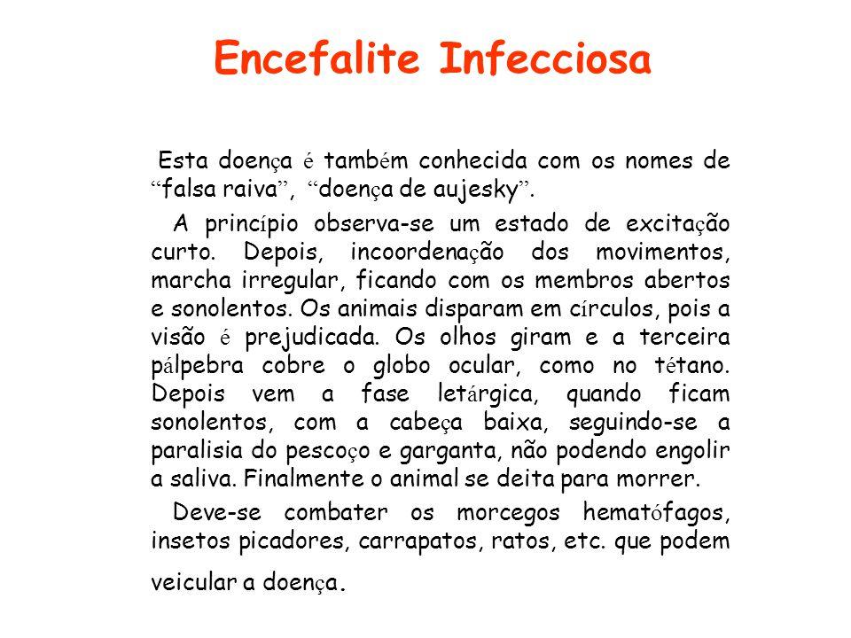 Encefalite Infecciosa