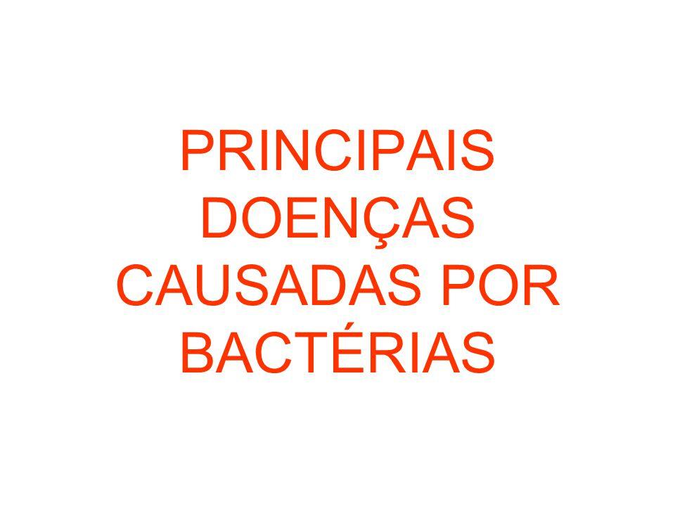 PRINCIPAIS DOENÇAS CAUSADAS POR BACTÉRIAS