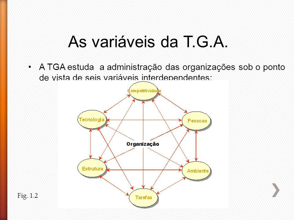 As variáveis da T.G.A. A TGA estuda a administração das organizações sob o ponto de vista de seis variáveis interdependentes: